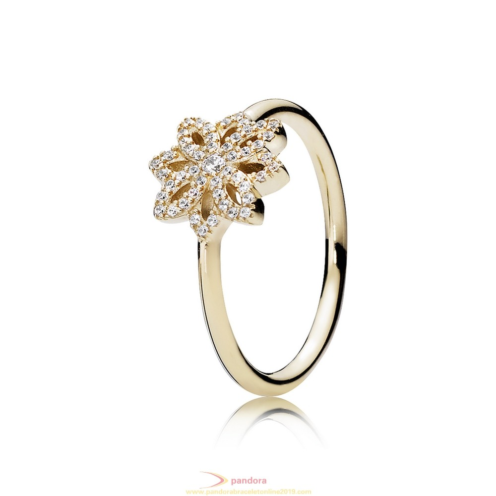 Find Pandora Jewelry Pandora Collections Lace Botanique Ring Clear Cz 14K Gold